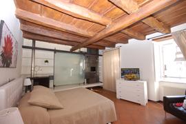 Fontana Terrina apartment