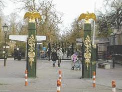 How to entertain children in Amsterdam